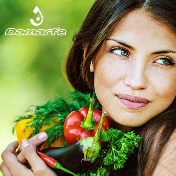 Website: Grupo Damarfe
